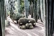 giardino-majorelle-marrakesh